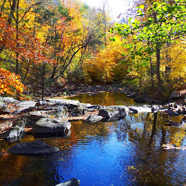 by Krystle Henninger - Landscapes Waterscapes ( water, fall, trees, rocks, river,  )