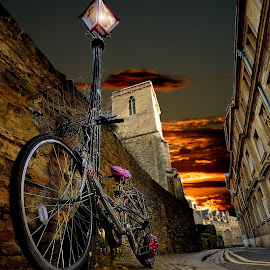 old Oxford by Dorota Grolewska - Transportation Bicycles ( oxford stones street bicycle sunrise )