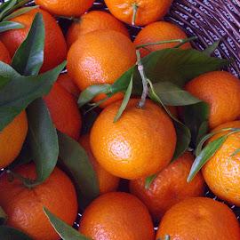 Clementines by Bozica Trnka - Food & Drink Fruits & Vegetables ( orange, juicy, fruit, sweet, clementine )