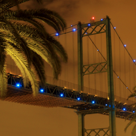 View of the Vincent Thomas Bridge by Janet Aguila Krause - City,  Street & Park  Skylines ( la harbor, san pedro, vincent thomas bridge )