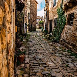 street past by Eseker RI - City,  Street & Park  Street Scenes (  )