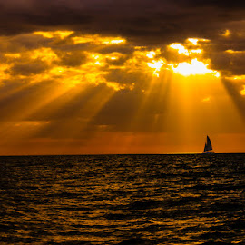 Sail Away Into The Sunset by Jan Irons - Landscapes Sunsets & Sunrises ( sailing, sunset, ocean, sailboat, sun rays,  )