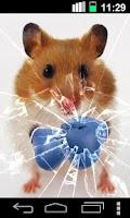 Screenshot of Funny Hamster Cracked Screen