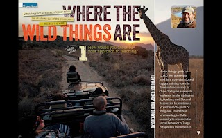 Screenshot of UConn Magazine