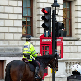 Copper at the lights by Dunstan Vavasour - City,  Street & Park  Street Scenes ( london, police, street, horse, traffic lights,  )