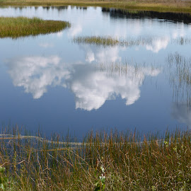 Reflections 2 by Mike Murray - Landscapes Cloud Formations