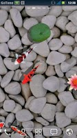 Screenshot of 3D Koi Pond Reality Live Wallp