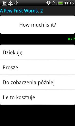 Surface Languages Polish