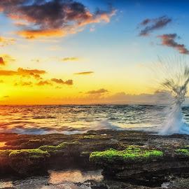 splash manyar beach by Didik Putradi - Landscapes Sunsets & Sunrises ( splash, beach, sunrise, morning, sun )