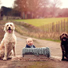 Harrison & his Doggies by Claire Conybeare - Chinchilla Photography - Babies & Children Babies