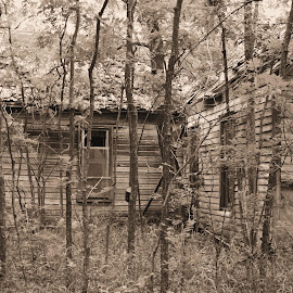 The Old Farm House by Brenda Hooper - Buildings & Architecture Homes ( home, oklahoma, farm house, ruin, red rock county, abandoned,  )