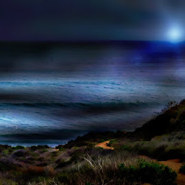Nighttime Beach Path by Tricia Scott - Landscapes Waterscapes ( nighttime, pacific ocean, path, moody, pacific, ocean, night, beach, walk )