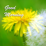 Best Good Morning Images 1.03 Apk