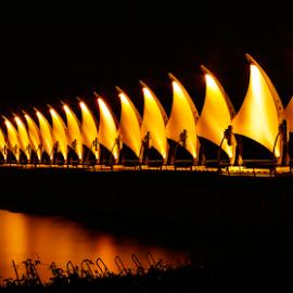 Bridge by Jayanta K Biswas - Landscapes Travel