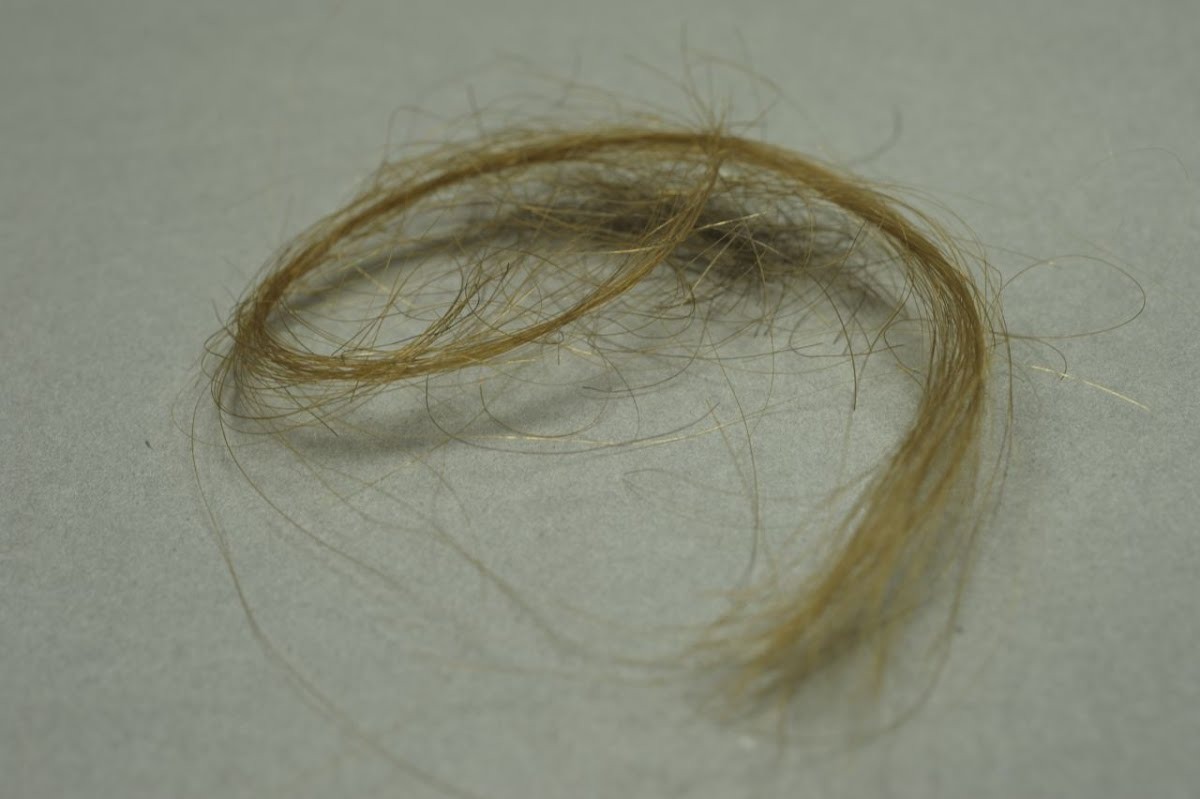 Tragic mementos left of Mala and Edek: locks of their hair.