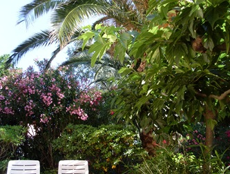 terrasse giens
