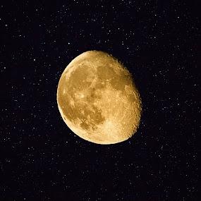 August Moon by Lanis Rossi - Uncategorized All Uncategorized