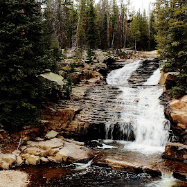Provo WaterFall by Michelle Terry - Landscapes Waterscapes ( water, stream, utah, canyon, rock )