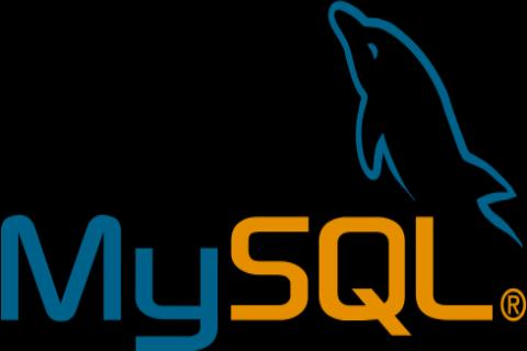 MySQL Reference Manual 5.0 ES