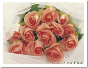 rosas-rosas
