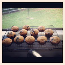 Blueberry Muffins (1 Ww Point Each)