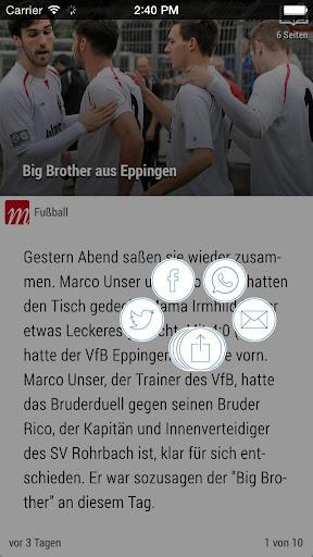 MStimme - screenshot