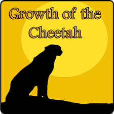 Growth of the Cheetah