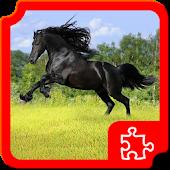 Beautiful Horses Puzzles APK for Nokia
