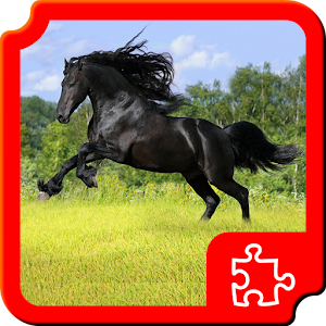 Beautiful Horses Puzzles