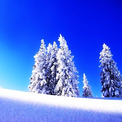 三維冬季雪 LOGO-APP點子