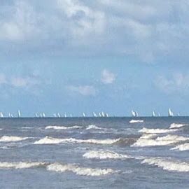 Harvest Moon Regatta sailing off Galveston Island by Richard Vaughn - Novices Only Sports