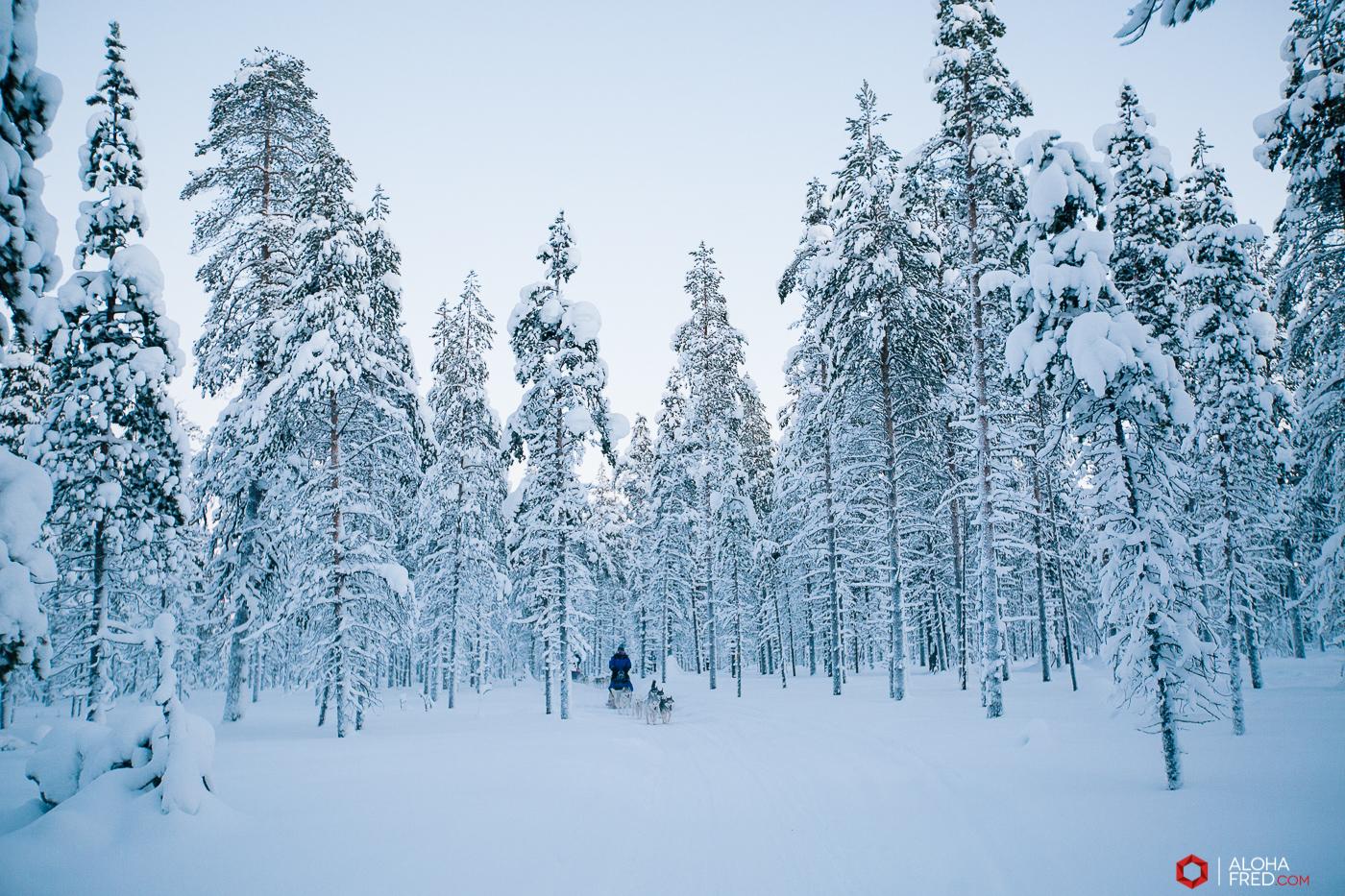 0016 - alohafred Laponie - _5E_1374