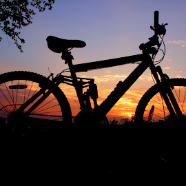 Sunset on The Bluffs by James Timmer - Transportation Bicycles