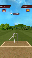 Screenshot of World Cup Flick Cricket 2015