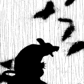 Scaring Butterflies by Elyzabeth Krajewski - Abstract Macro ( mice silouhette nature upclose black and white,  )