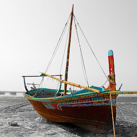Selection colors by Fawad Hashmi - Transportation Boats ( pwc, selective color, sea, beauty, boat )