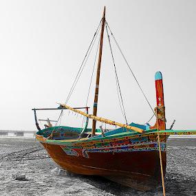 Selection colors by Fawad Hashmi - Transportation Boats ( pwc, selective color, sea, beauty, boat,  )