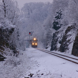 Snow Train by Sean Murray - Transportation Trains