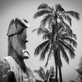 Totem 01 by Karen Martin - City,  Street & Park  Historic Districts ( palm, statue, explorer, hawaiian, shrine, tree, tropical, beach, totem, hawaii )