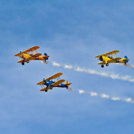 The Three Biplanes by David Dise - Transportation Airplanes