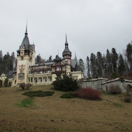 Peles Castle Romania by Carmen Kovacs - Buildings & Architecture Public & Historical
