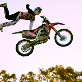 Air Time by Linda Taylor - Sports & Fitness Motorsports ( queensland, motorbike, tricks, gold coast, mid-air, movie world, stunt, motorsports,  )