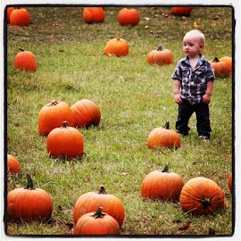 Pumpkin kid by Spacer Conrad - Novices Only Portraits & People