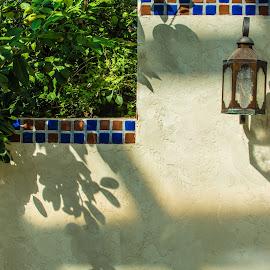 by Matt Meyers - City,  Street & Park  City Parks ( st louis, lantern, garden, biodome, missouri botanical garden, temperate garden )