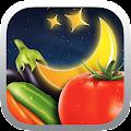 Moon & Garden