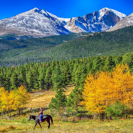 Horseback Riding in the Rockies by Jennifer McWhirt - Landscapes Forests ( horseback riding, mountains and hills, photographybyjenmcwhirt.com, autumn, colorado, aspens, rocky mountain national park, landscapes )