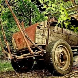 Caravan by Costin Mugurel - Transportation Other ( summer, romania, cart, decay, country )