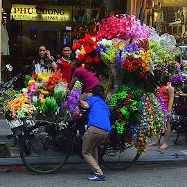 On the street of Hanoi, Vietnam by Andrew Piekut - City,  Street & Park  Street Scenes ( shop, market, bike, people, flower )