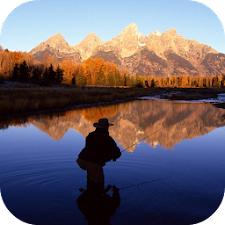 Fly Fishing Live Wallpaper