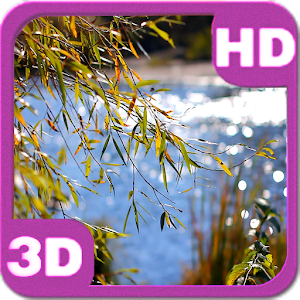 Lake View Willow Landscape HD